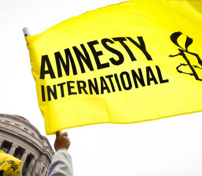 Amnesty International job: the possibility for ambitious specialists